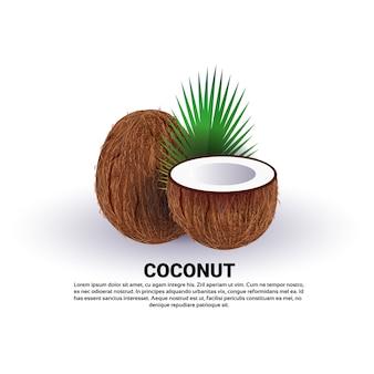 白い背景、健康的なライフスタイルやダイエットの概念、新鮮な果物のロゴにココナッツ