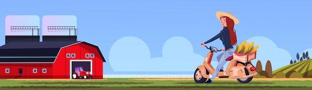 Женщина езда скутер или мотоцикл с кукурузой в коробке деревни пейзаж сельской местности эко фермы трактор концепция векторные иллюстрации