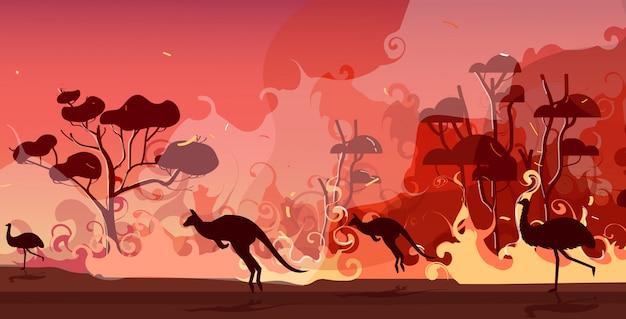 オーストラリアの森林火災から実行しているオーストラリアの動物のシルエット山火事山火事燃える木自然災害コンセプト強烈なオレンジ色の炎水平