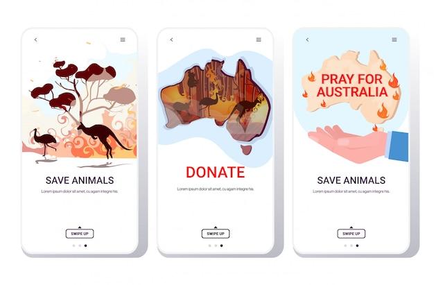 Установить лесные пожары лесной пожар лесной пожар стихийное бедствие молиться за австралия спасти животных концепция телефон экраны коллекция мобильное приложение горизонтальное копирование пространство