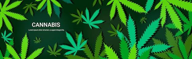 Каннабис или марихуана листья концепция потребления наркотиков горизонтальный копией пространства