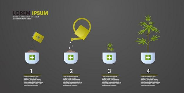 医療用マリファナ大麻プランテーション産業概念水平コピースペースの段階を植える大麻植物成長のサイクル