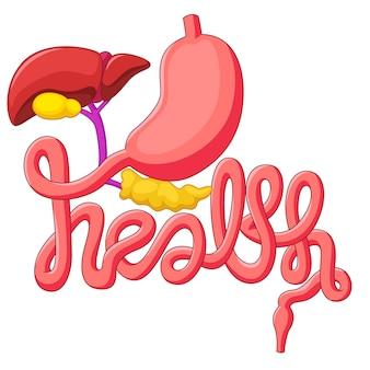 健康運動シンボル人間の消化器系