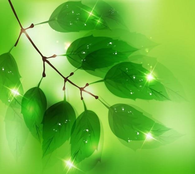 無料の抽象的な自然なデザインのベクトル図