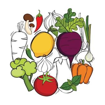 Ручной обращается иллюстрации с вектором органических овощей