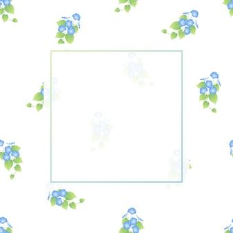 Голубая утренняя слава на белом фоне.
