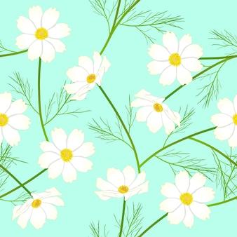 Белый цветок космоса на фоне зеленой мяты