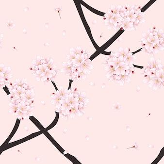 Цветок сакуры вишневого цвета на светло-розовом фоне