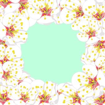 Белая цветочная рамка цветка сливы на зеленой мяте