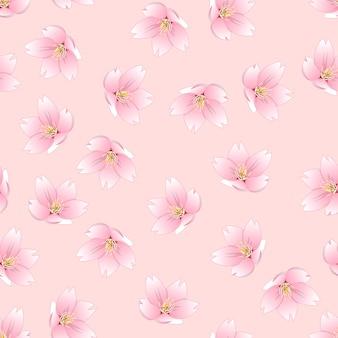 Сакура черри блоссом на розовом фоне