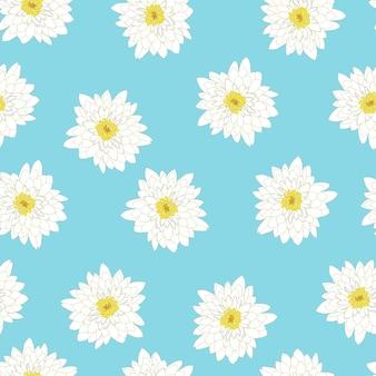 Белая хризантема на синем фоне
