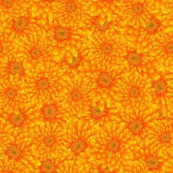 Желтый хризантемы бесшовные фон
