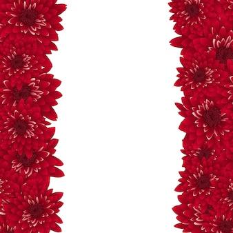 赤い菊の国境