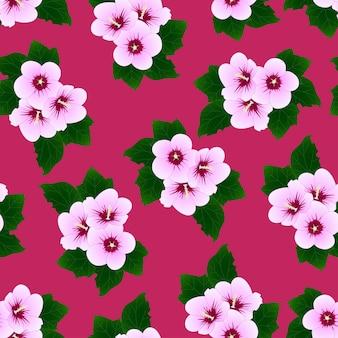 ハイビスカス・シリアス - ピンクの背景にシャロンのローズ