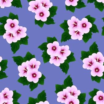 ハイビスカスシリアス - 紫色の背景にシャロンのローズ。