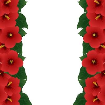 赤いハイビスカスの花 - シャロンのボーダーのローズ