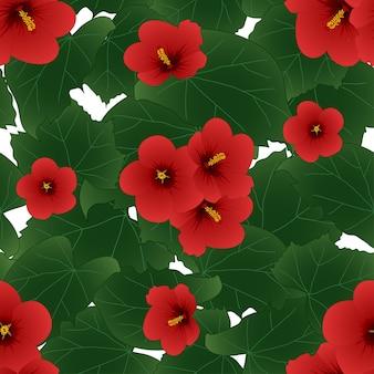 赤いハイビスカス・シリアス - シャロンのバラの背景