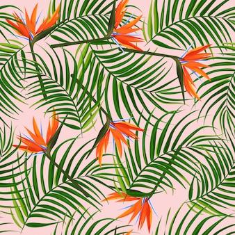 熱帯のパターン。