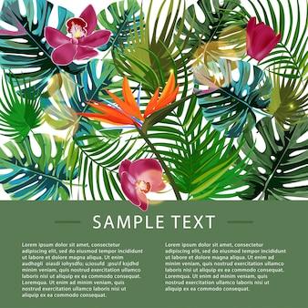 Шаблон оформления тропических растений.