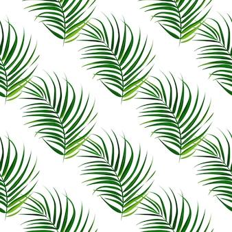 Тропические пальмы листья бесшовные модели.