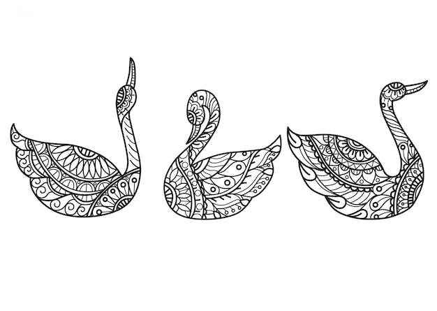 白鳥のパターン。大人の塗り絵の手描きスケッチ図