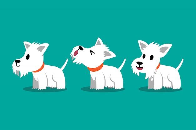 Набор векторных мультипликационный персонаж белый шотландский терьер позы собаки