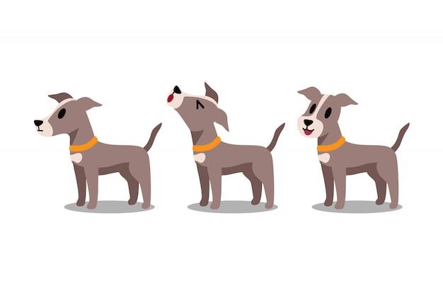 漫画のキャラクターのグレイハウンド犬のポーズのセット
