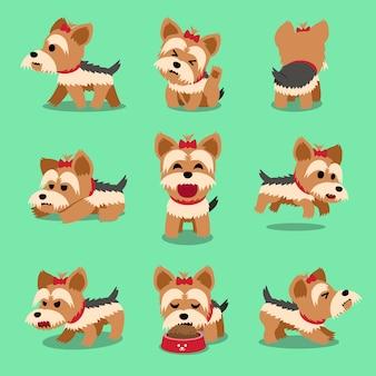 ベクトル漫画のキャラクターのヨークシャーテリア犬のポーズセット