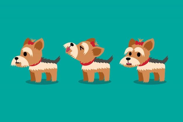 漫画のキャラクターのかわいいヨークシャーテリア犬のポーズ