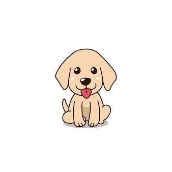 かわいいゴールデンレトリーバー子犬犬