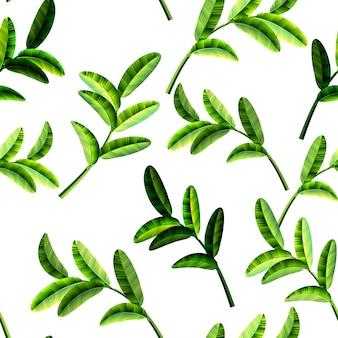 夏の熱帯の葉 - 夏の葉のフレーム、装飾的な夏の熱帯パターン