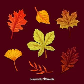 Плоский дизайн коллекции осенних листьев