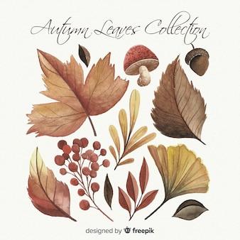 Коллекция осенних листьев в стиле акварели
