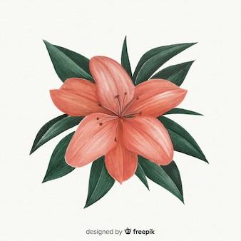 美しい水彩コラー花