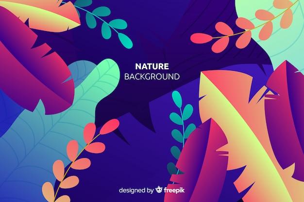 色鮮やかな葉と自然の背景