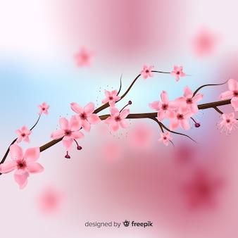 Реалистичный вишневый цвет фона