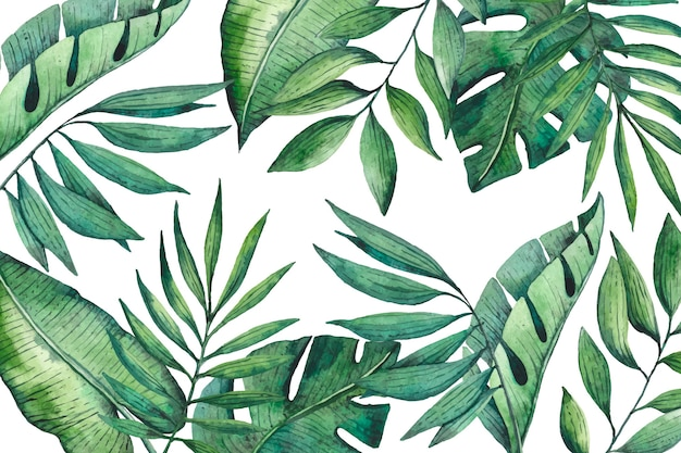 熱帯の葉の壁紙
