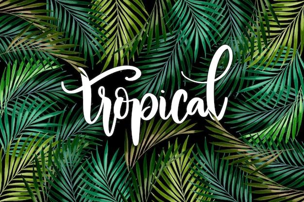 夏の熱帯の葉のレタリング