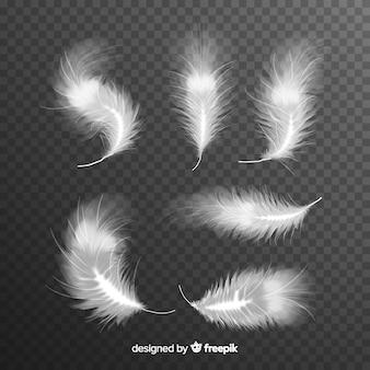 リアルな白い羽毛のセット