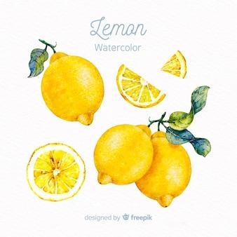 水彩レモン