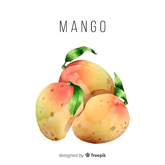 水彩マンゴー