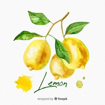 水彩レモンの背景