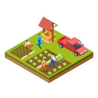 Садоводство и уборка урожая