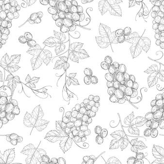 ブドウのシームレスなパターンをスケッチします。