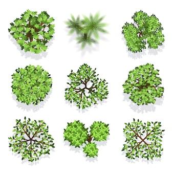 Деревья вид сверху векторный набор для ландшафтного дизайна и карты. зеленое дерево для сада, деревья иллюстрации для