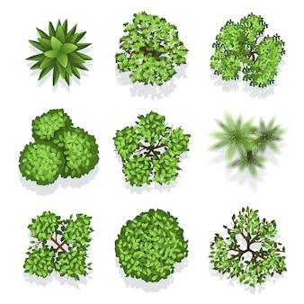 さまざまな植物や樹木を上から見ることができます。建築や風景のデザインのための木のベクトルセット。イルル