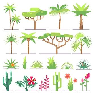熱帯植物、木々、フラワーベクトルコレクションの異なるタイプ。花とエキゾチックなパームイル