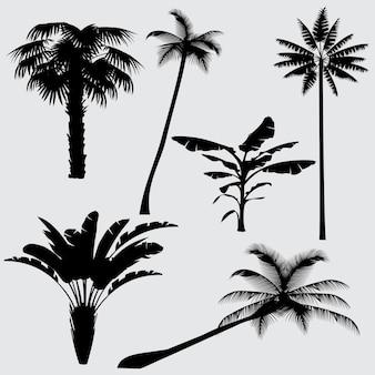 熱帯ヤシの木のベクトルのシルエット