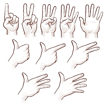 手描きのスケッチ男の手の数字を示す落書きセット。