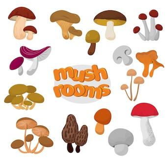 Лесные летние и осенние мультфильм съедобные грибы векторный набор